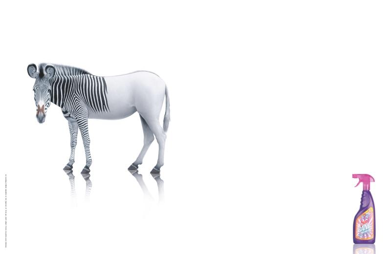 PPGH5830_CILLITBANG_Zebra.indd
